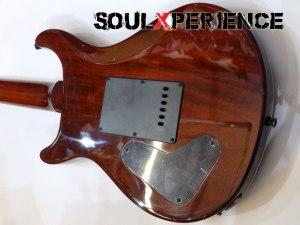 soulxperience-mahogany-2400cc89